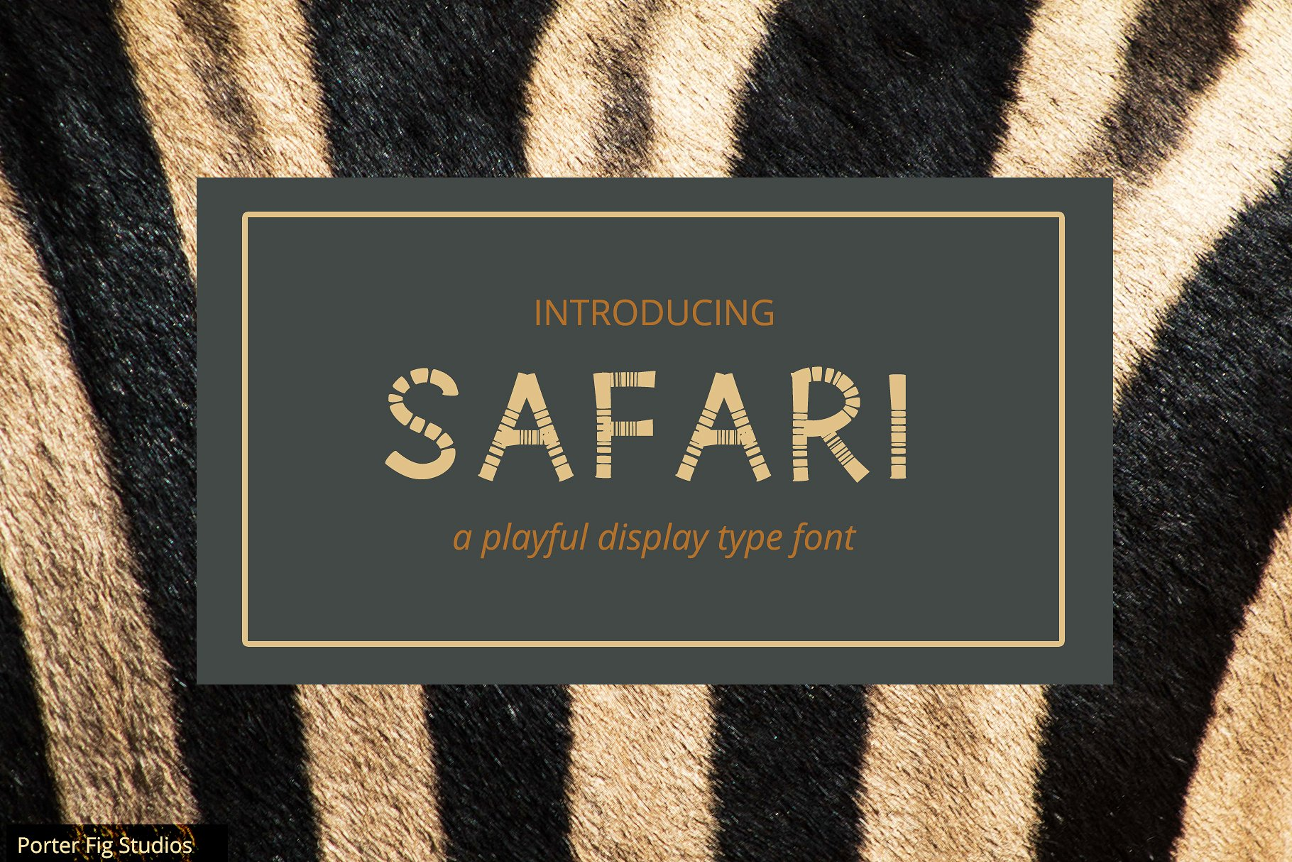 Safari Playful Display Font Typeface example image 1