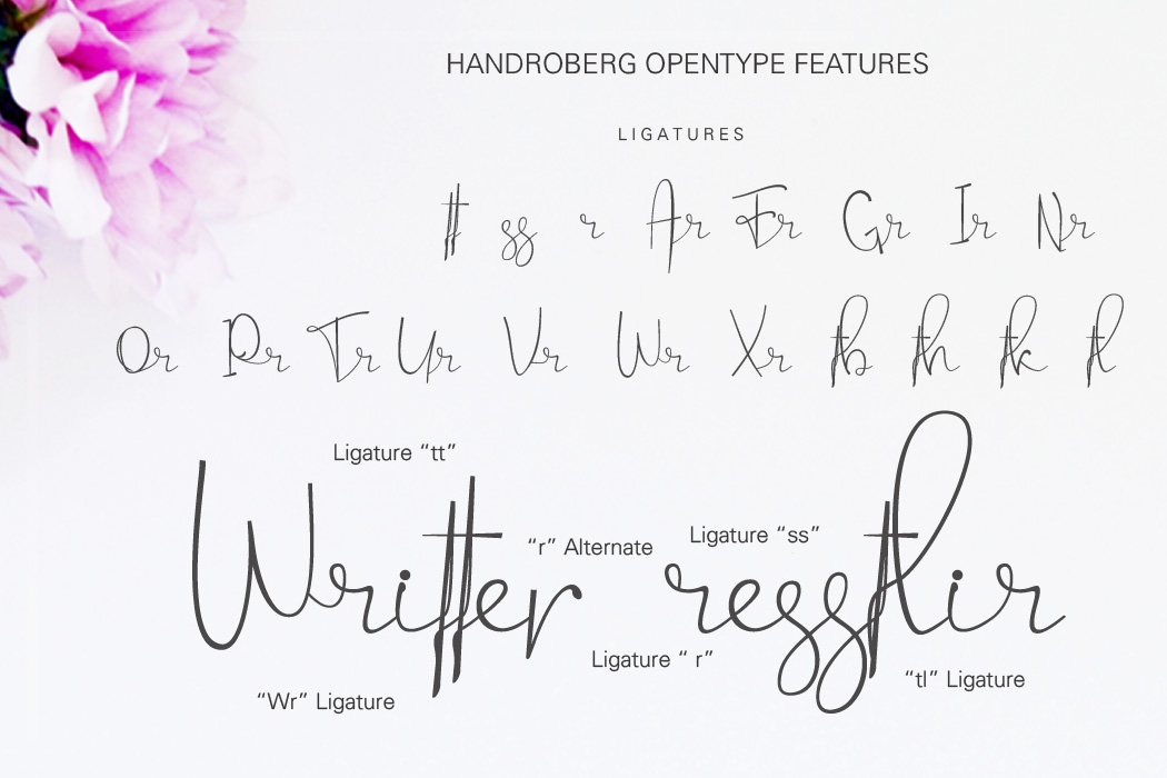 Handroberg Font example image 9
