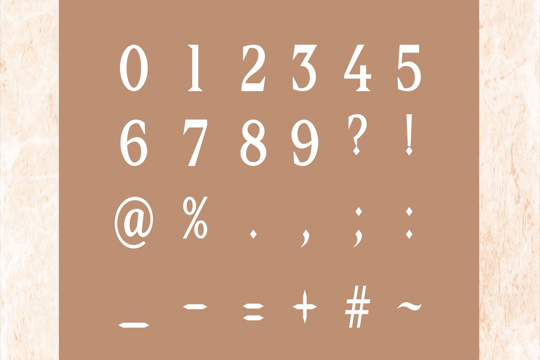 Delia - Regular & Bold Serif example image 5