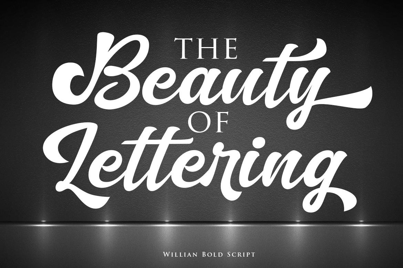 Willian Elegant Bold Script example image 4