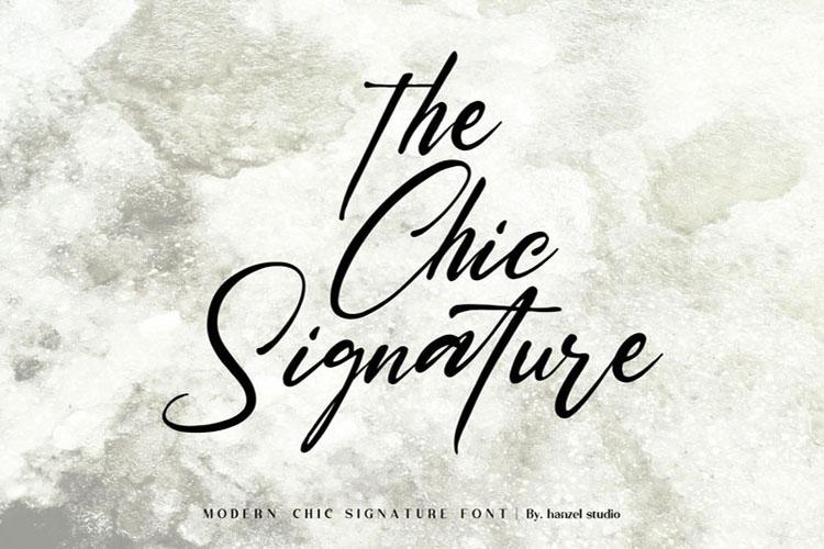Saltacrus//Chic Signature Font example image 5