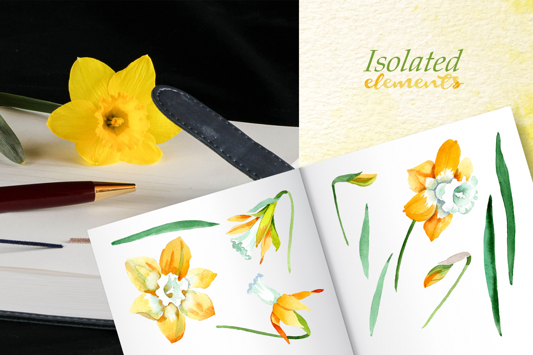 Yellow daffodil Watercolor png example image 6