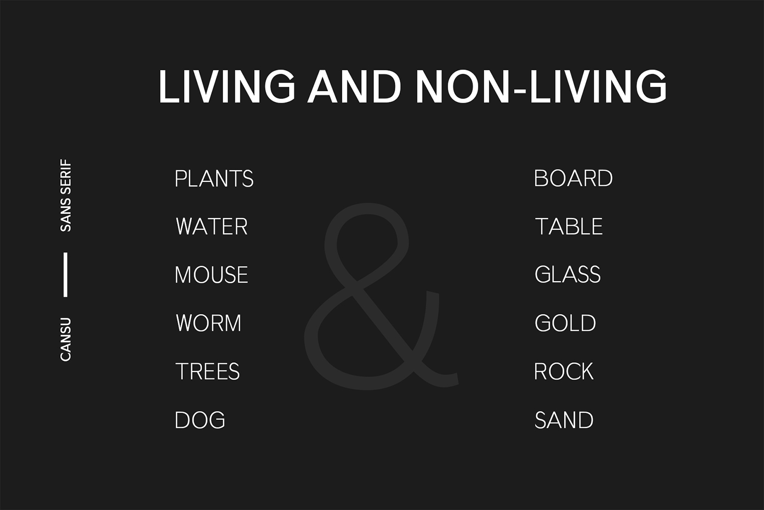 Cansu Sans Serif Font Family example image 5