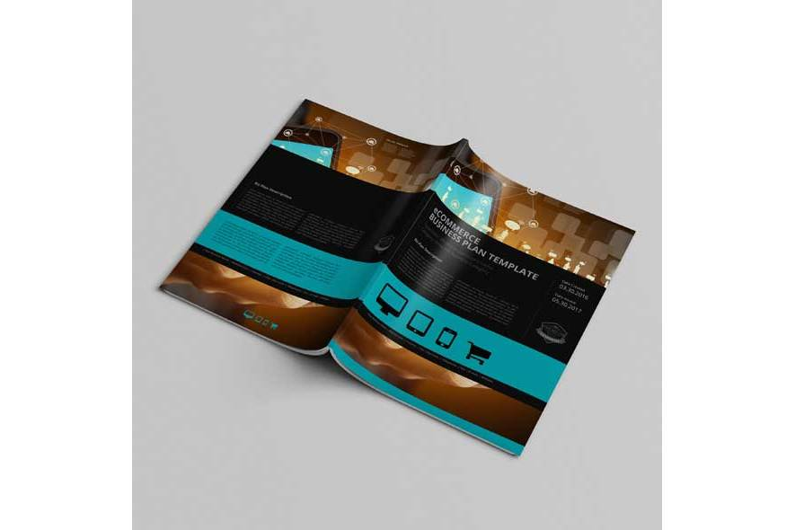 eCommerce Business Plan Template example image 4