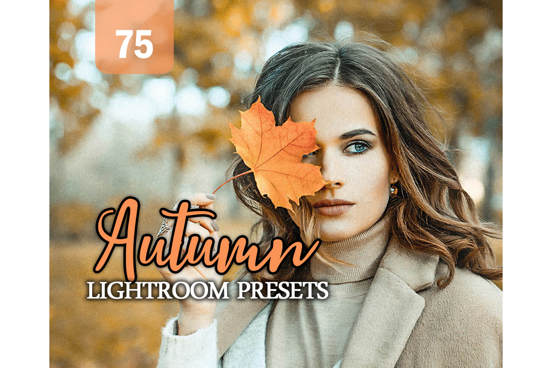 Autumn Lightroom Presets example image 1
