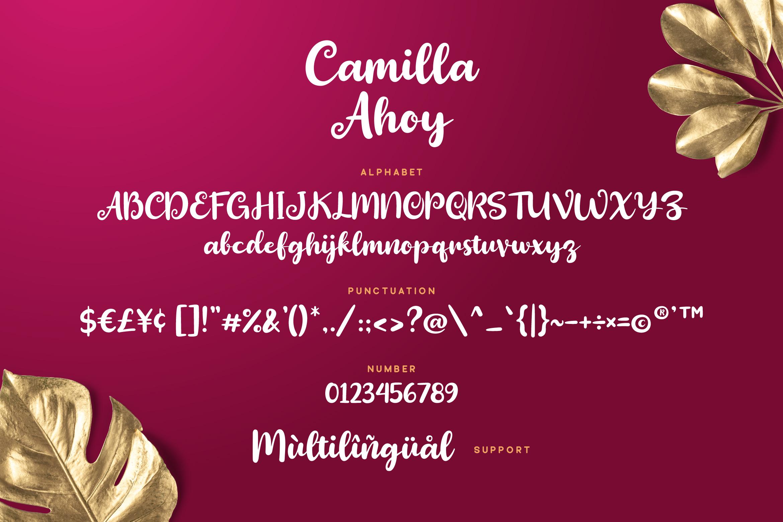 Camilla Ahoy - Cute Script Font example image 6