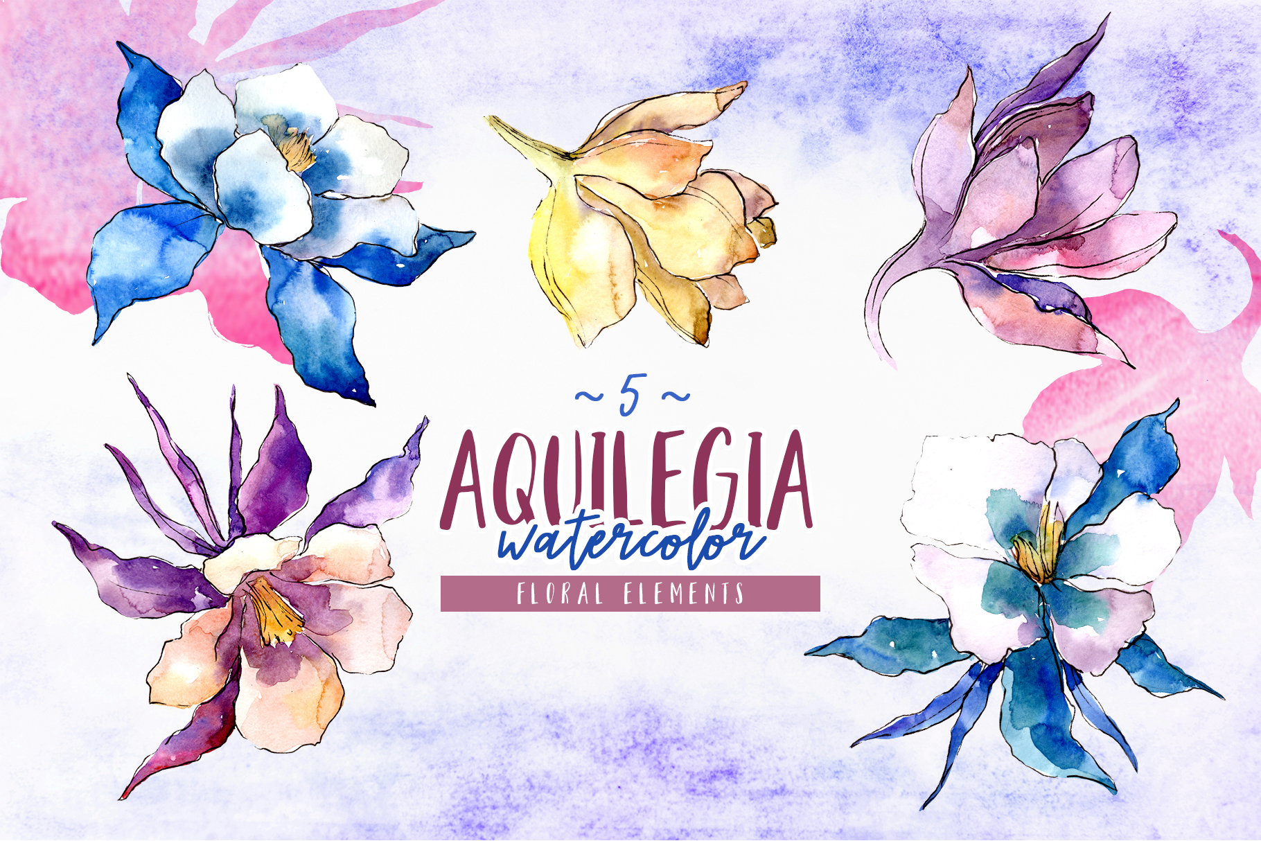 Beautiful aquilegia PNG watercolor set example image 7