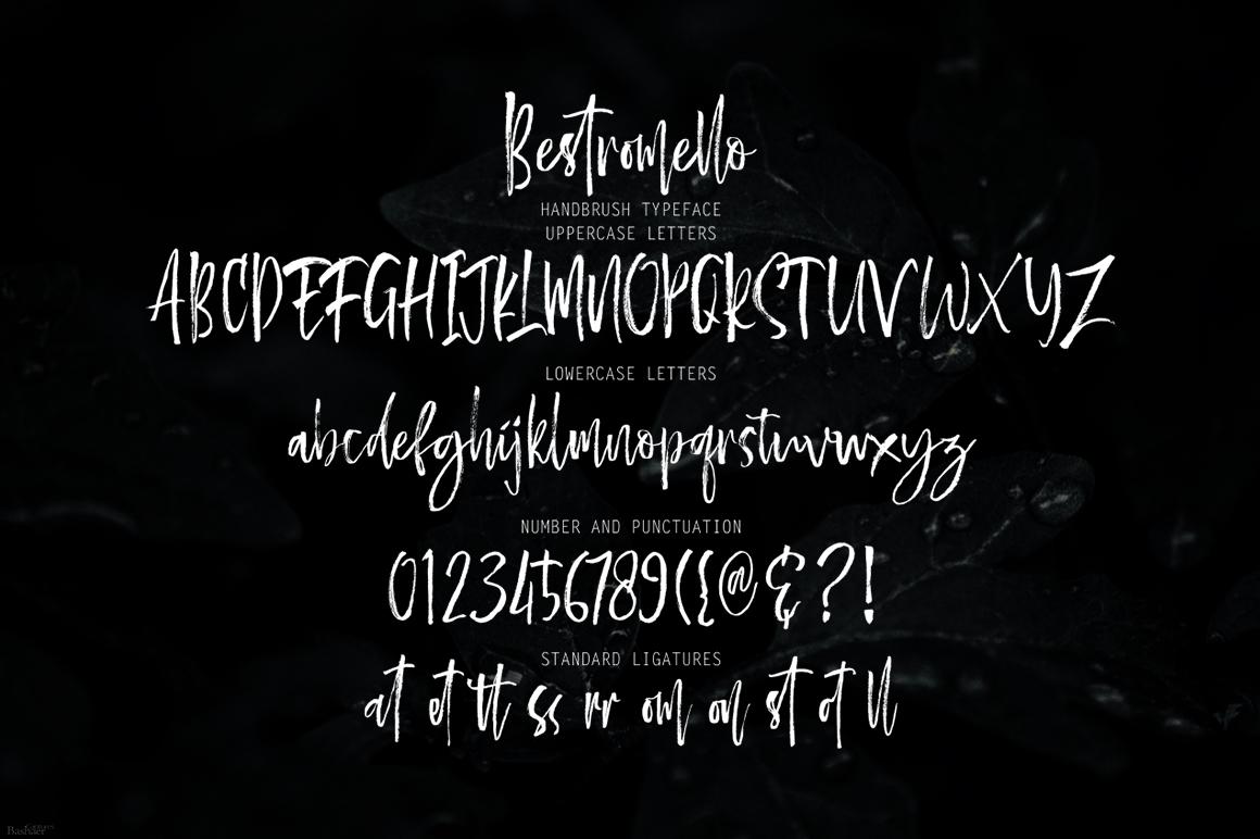 Bestromello Brush Font example image 9