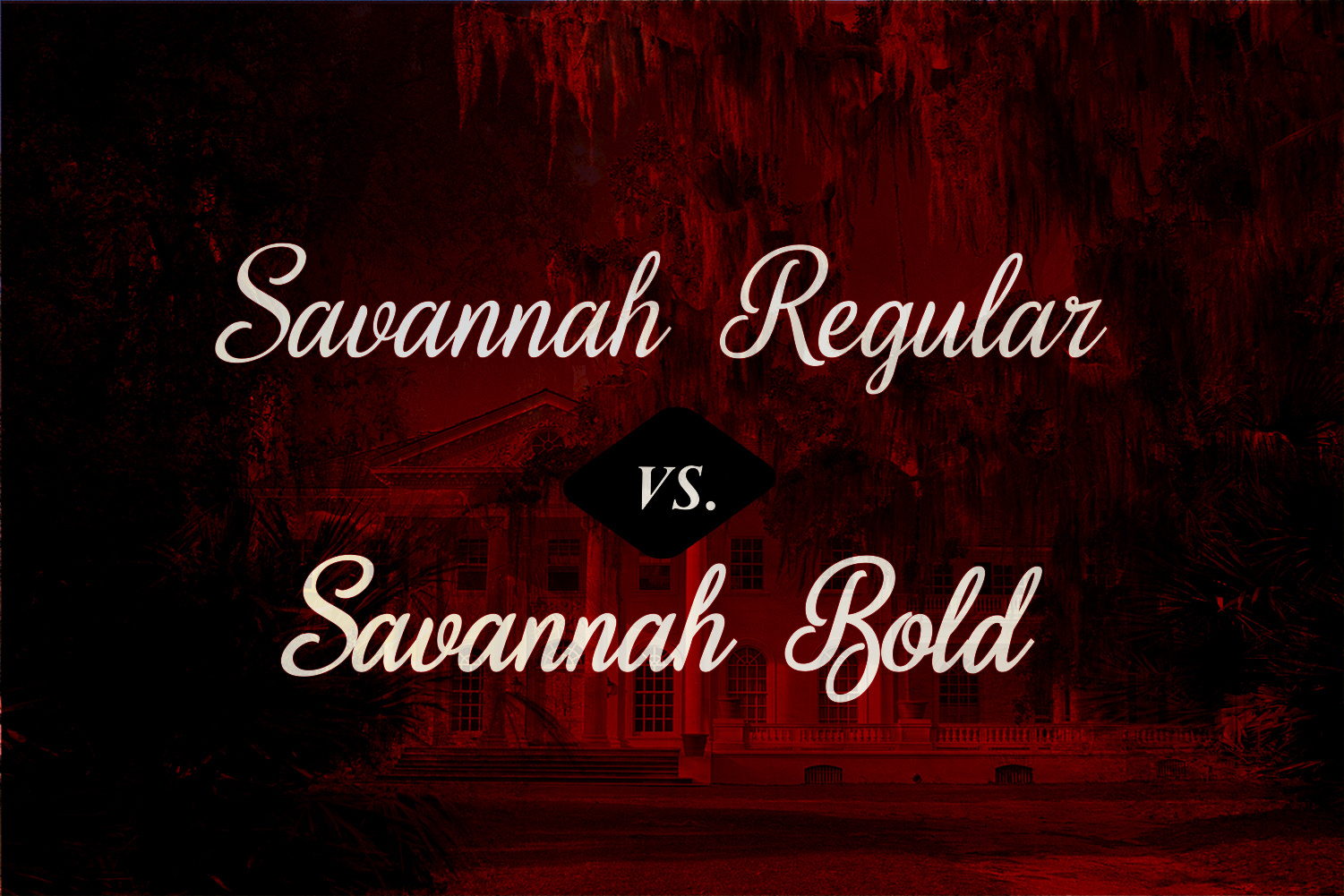 Sweet Home Savannah Font Duo example image 4
