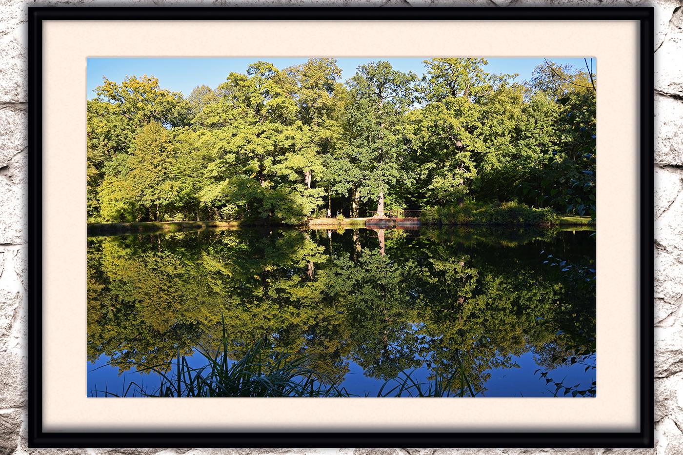 Nature photo, landscape photo, summer photo, sunset photo example image 6