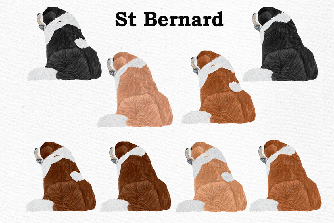 Dogs Clipart,Dog breeds Pet clipart,Watercolor dogs clipart example image 9