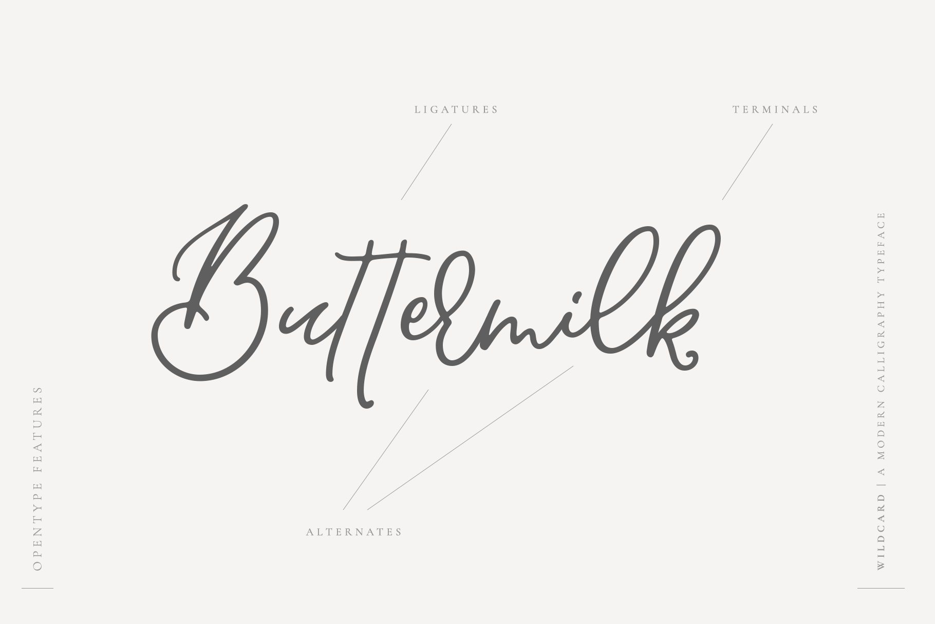 Wildcard | A Modern Calligraphy Script example image 10