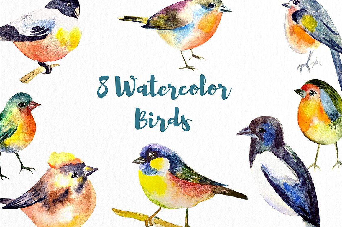 Watercolor Birds example image 2