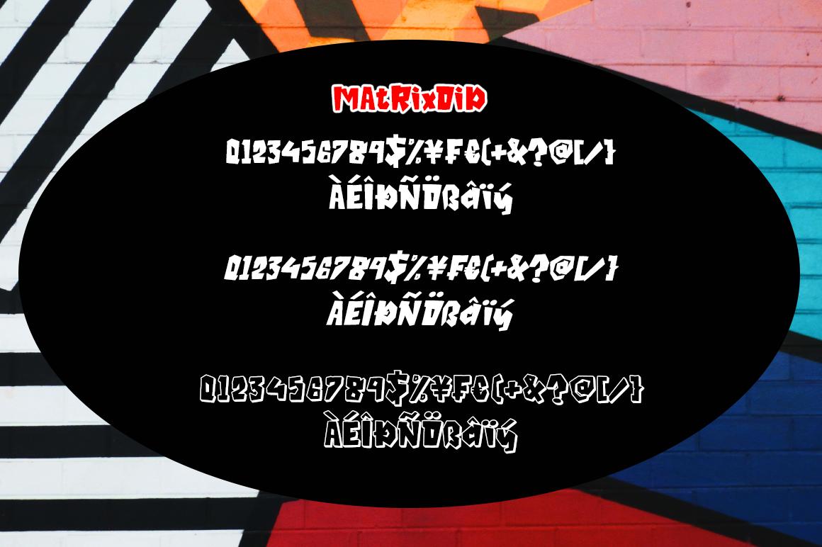 Matrixoid Bold Display font example image 7