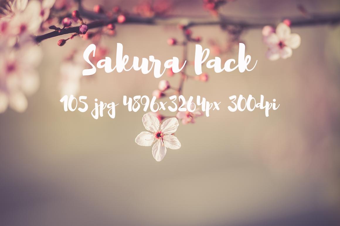 sakura photo pack example image 6