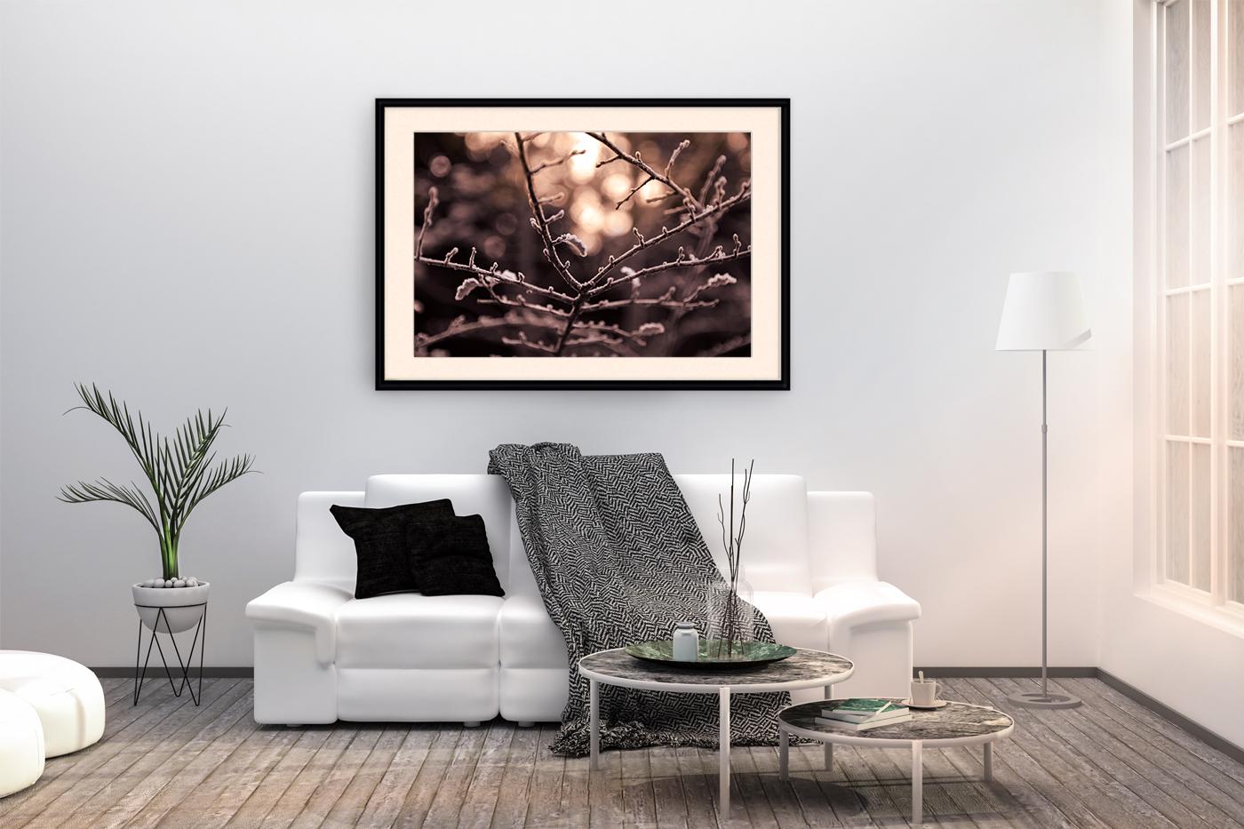 Nature photo, flora photo, twig photo, winter photo example image 4