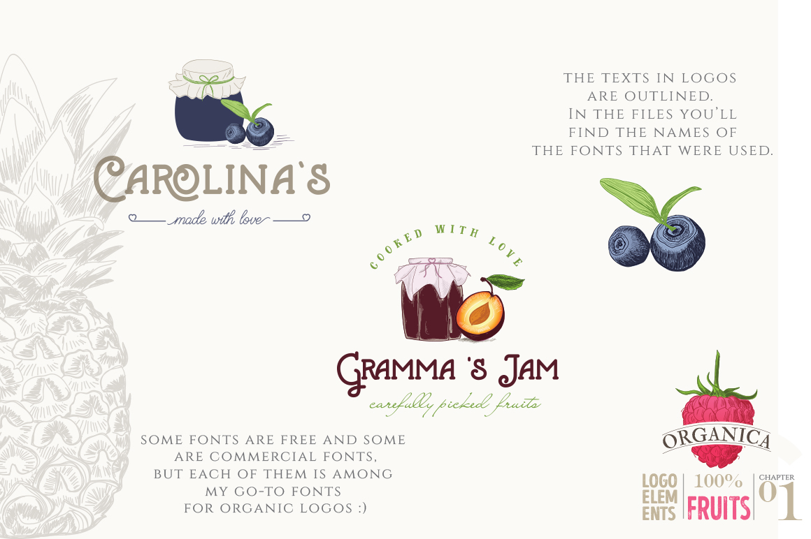 ORGANIC LOGO ELEMENTS  FRUITS example image 13