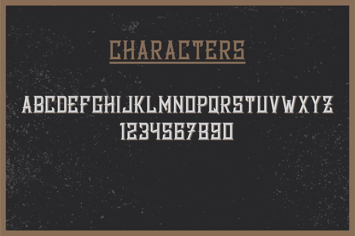 Whiskey Fonts Bundle example image 18