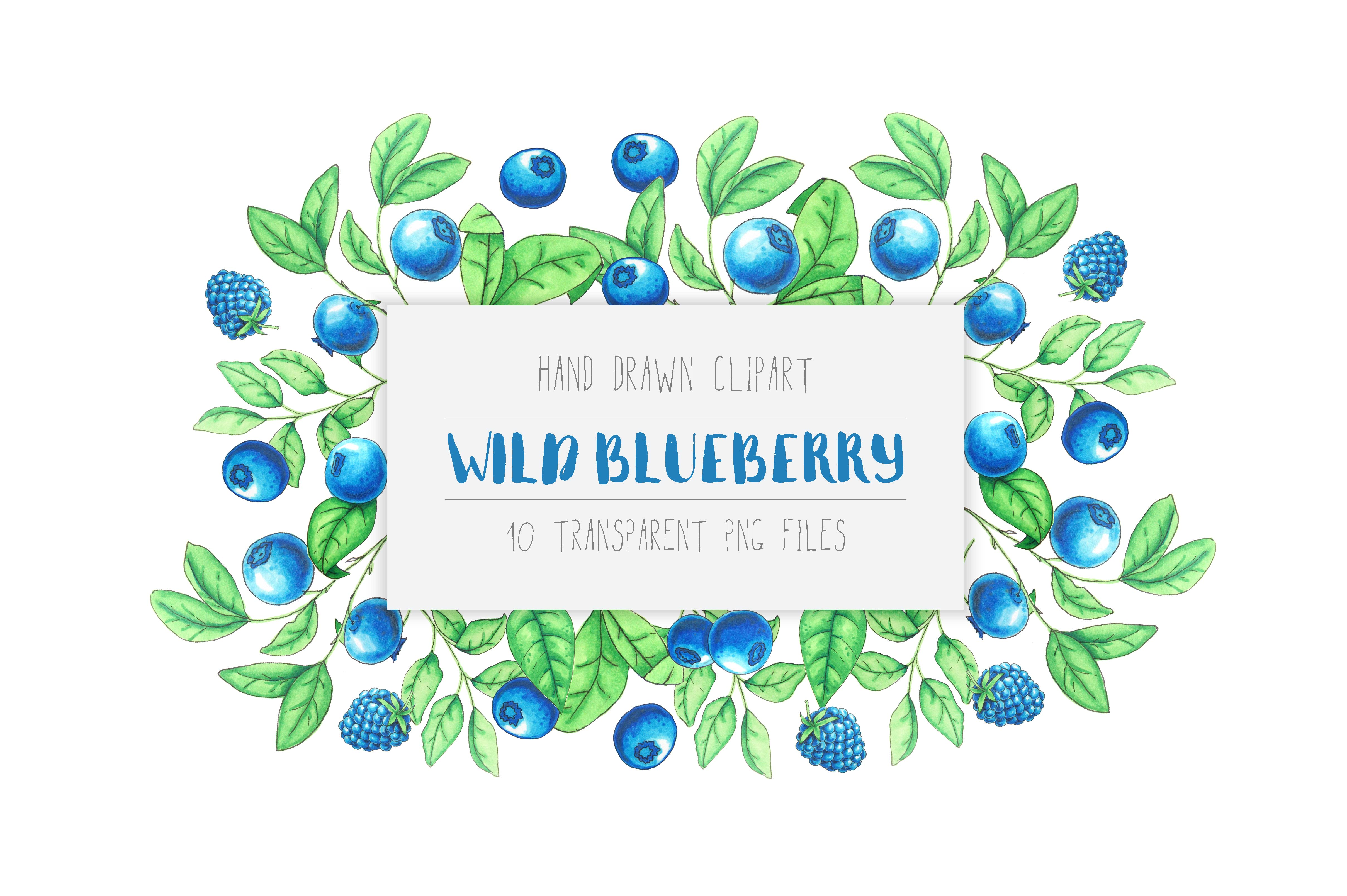Wild Blueberry Font Duo example image 2