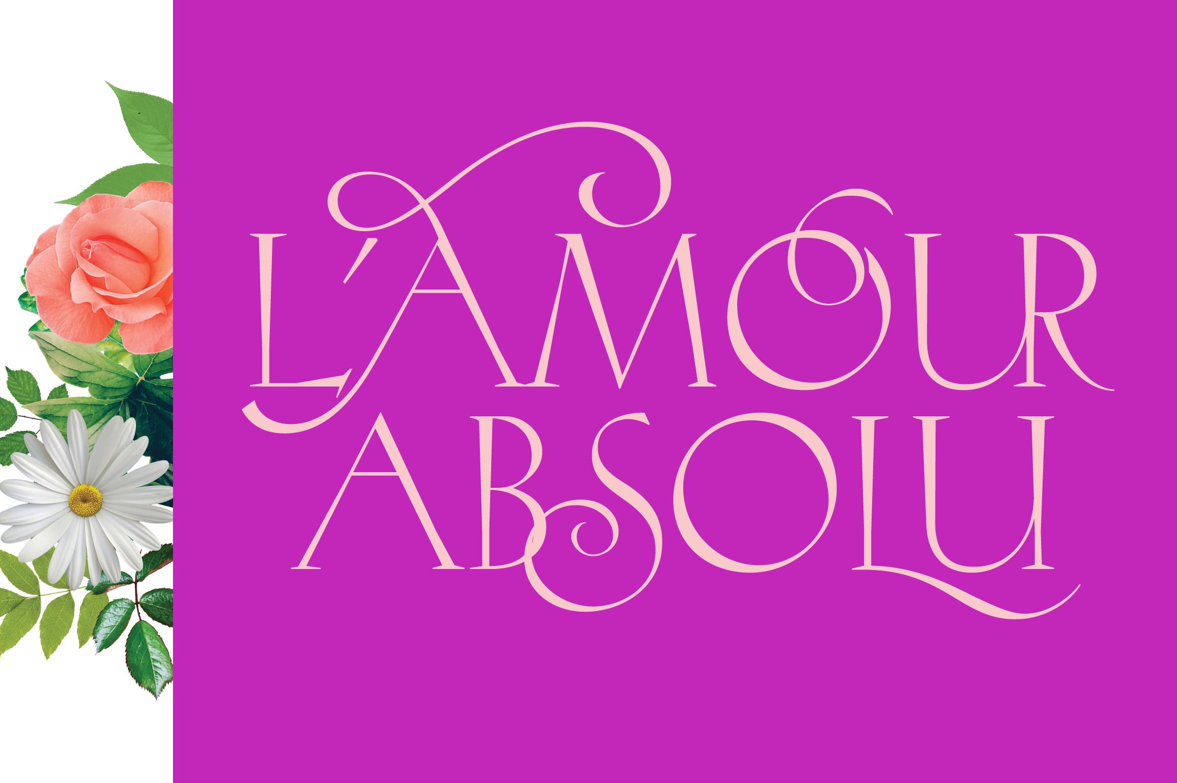 Hellen - Serif Font example image 8