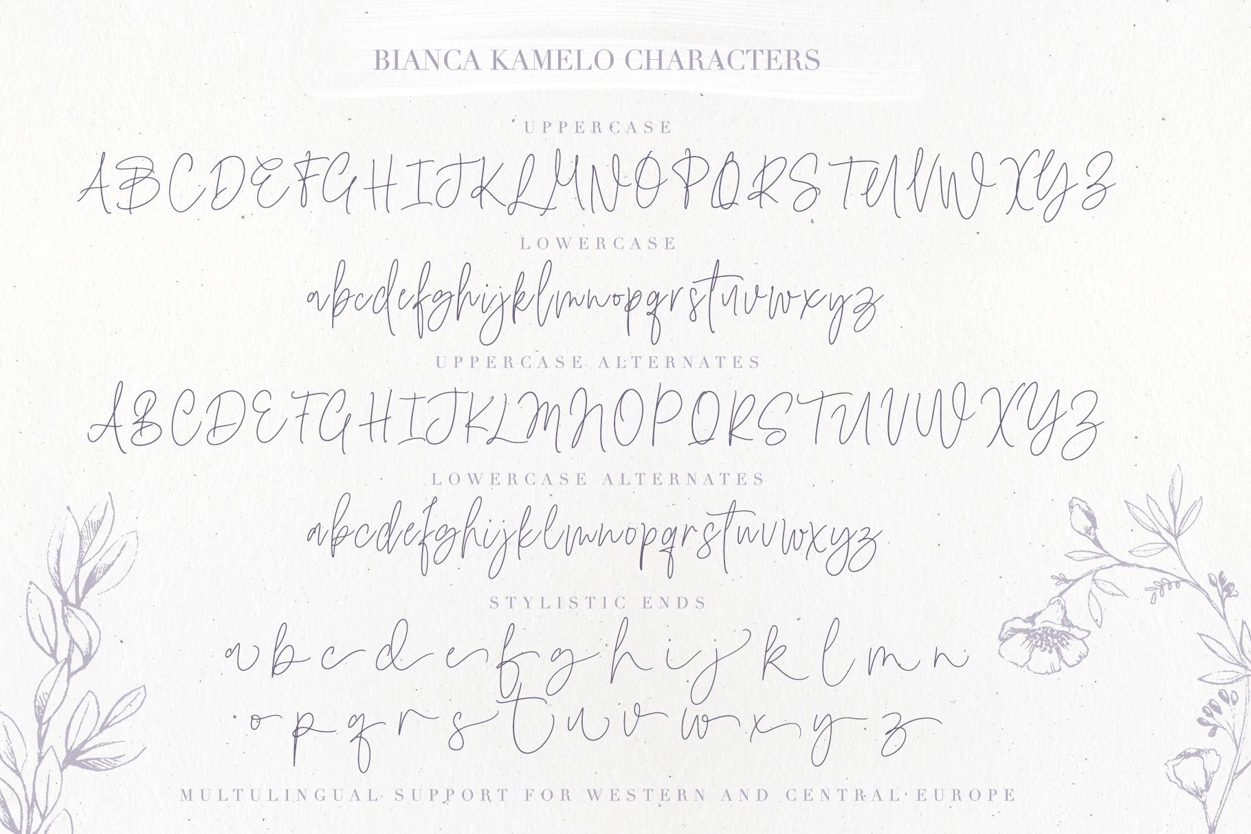 Bianca Kamelo Font example image 10