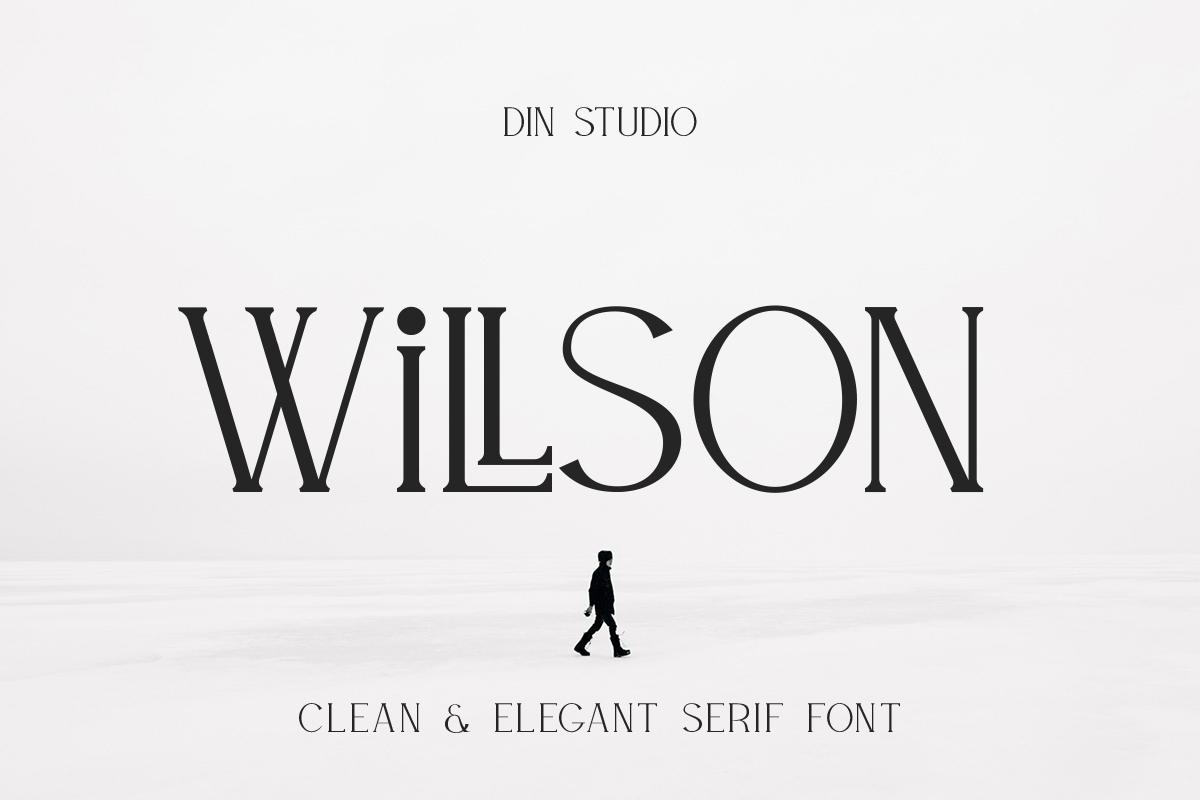 WILLSON - Clean Serif example image 1