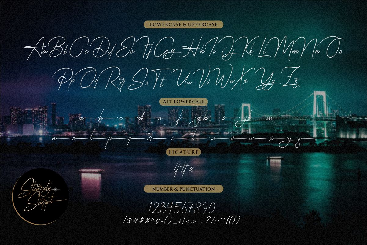 Starcity Script // Signature Font example image 7