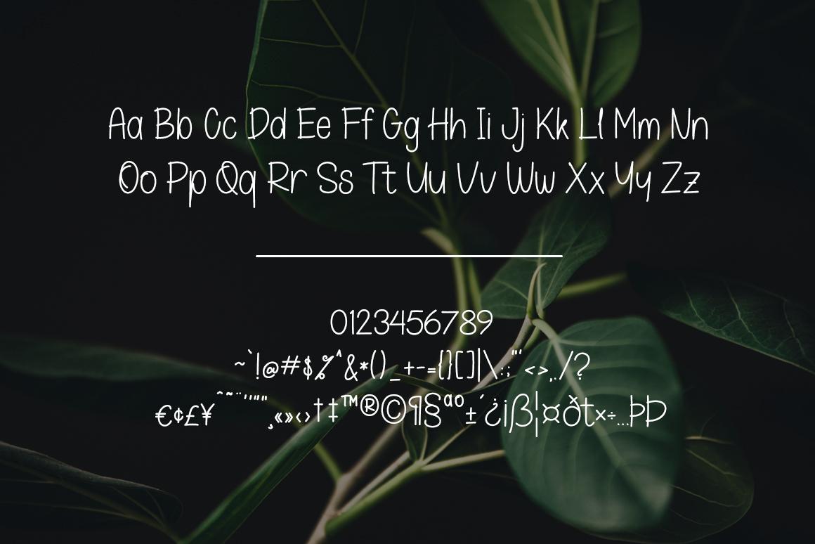 Oskosh Handwritten Font example image 8