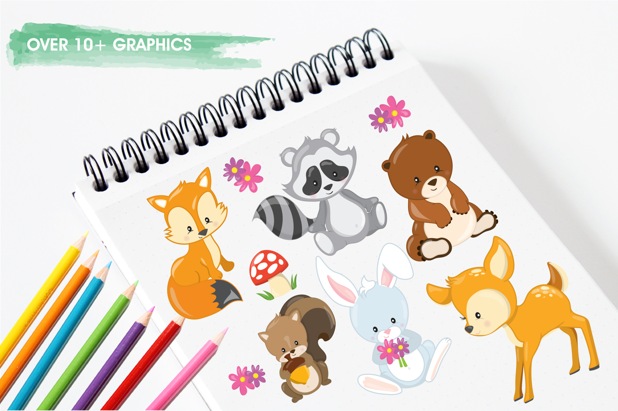 Woodland Animals graphics and illustrations example image 3