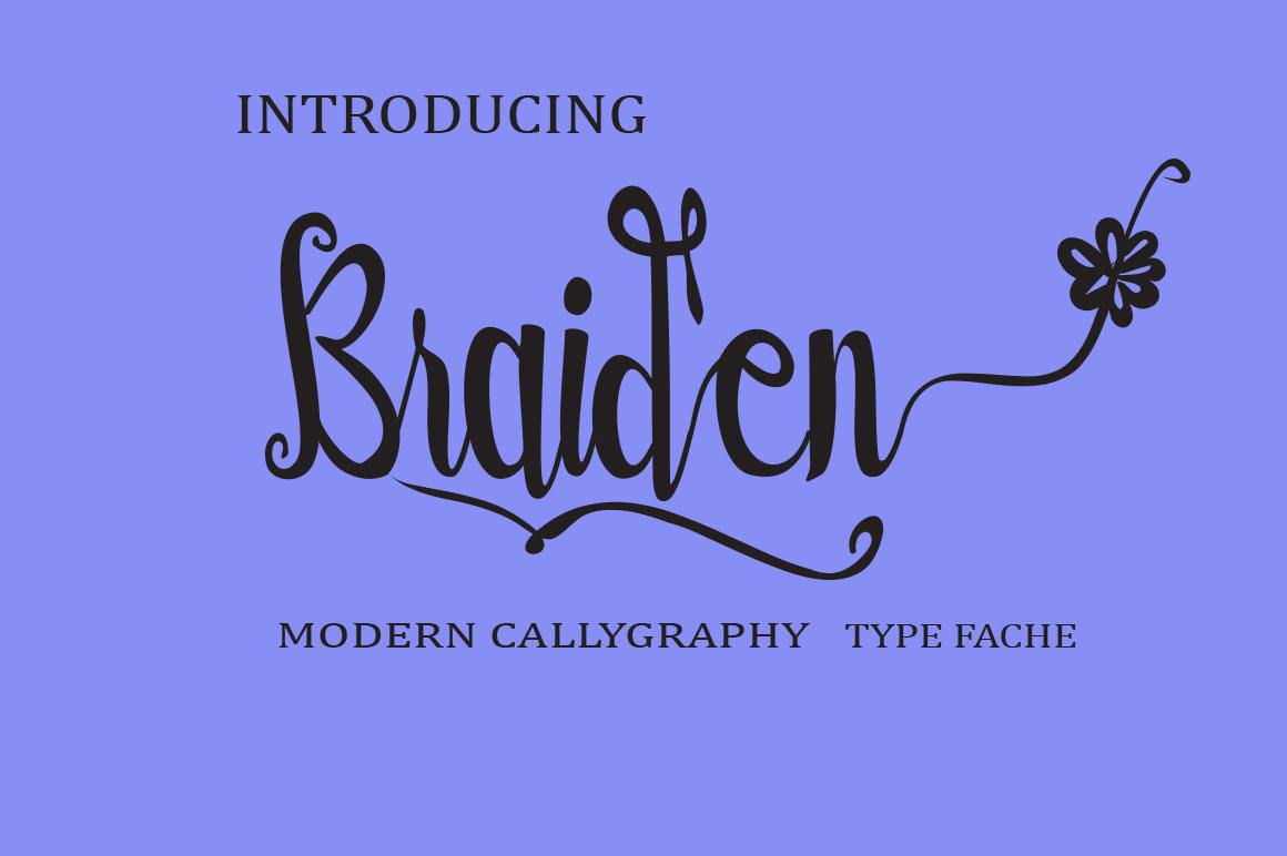 BUNDLE FONT COLLECTION example image 13