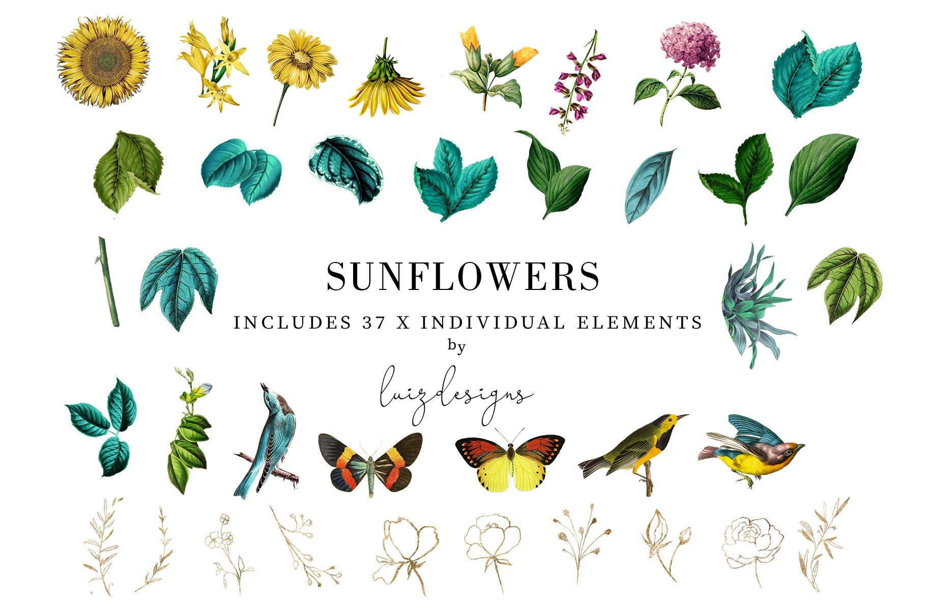 Sunflowers example image 4