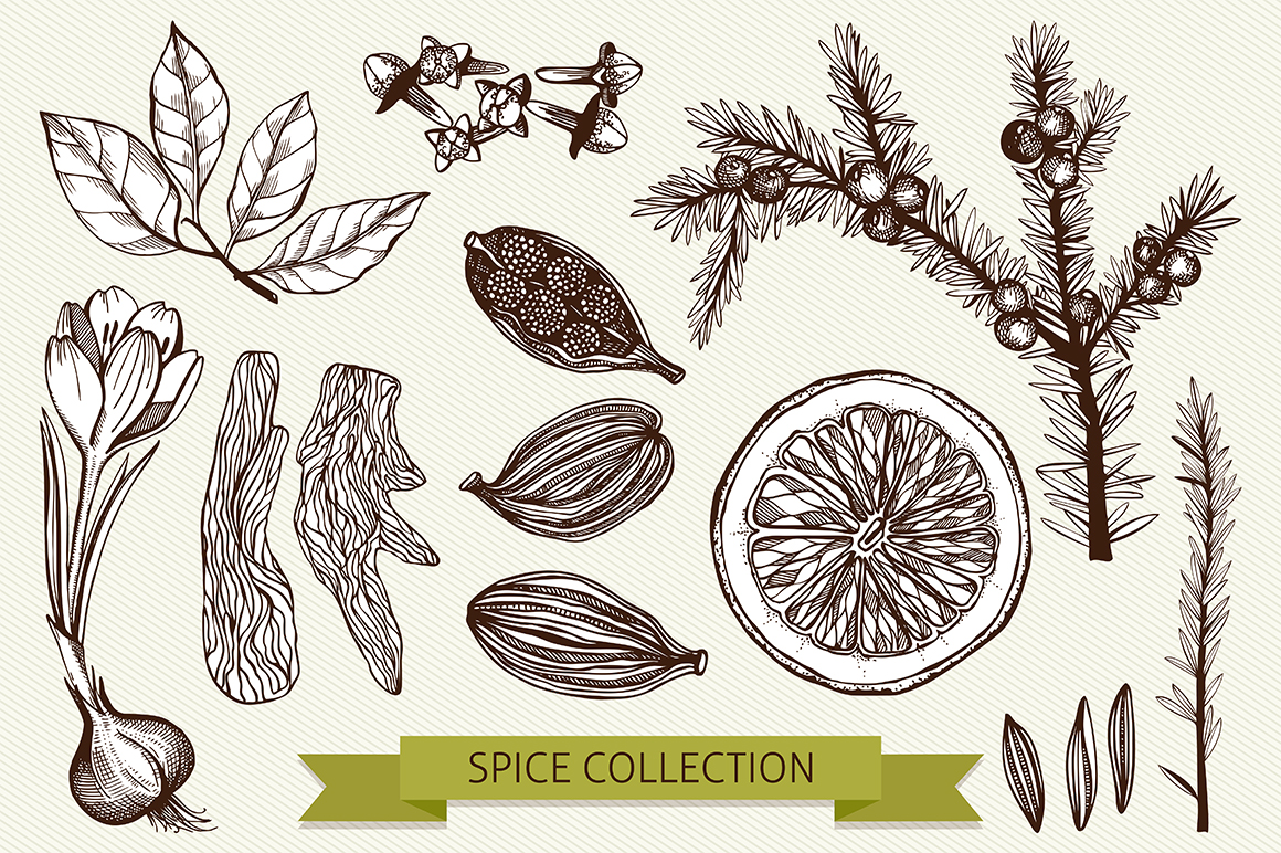 Ink Hand Drawn Spice Collection example image 4
