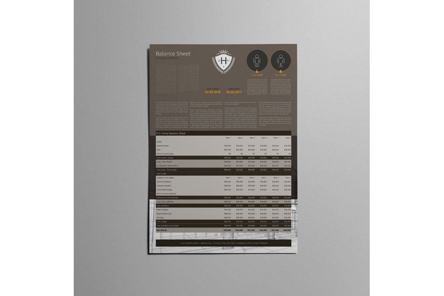 A3 Balance Sheet Template example image 4