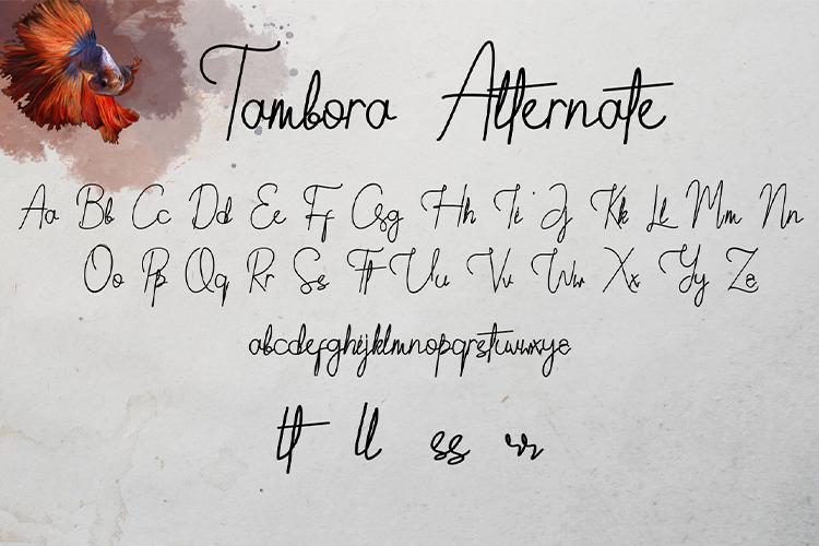 Tambora example image 4