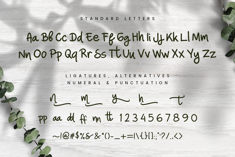 Nina Ninut - Fun Handwritten Font example image 7