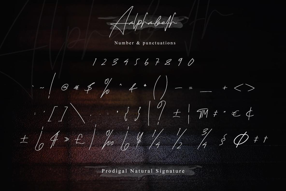 Prodigal Natural signature & Extra swash example image 18