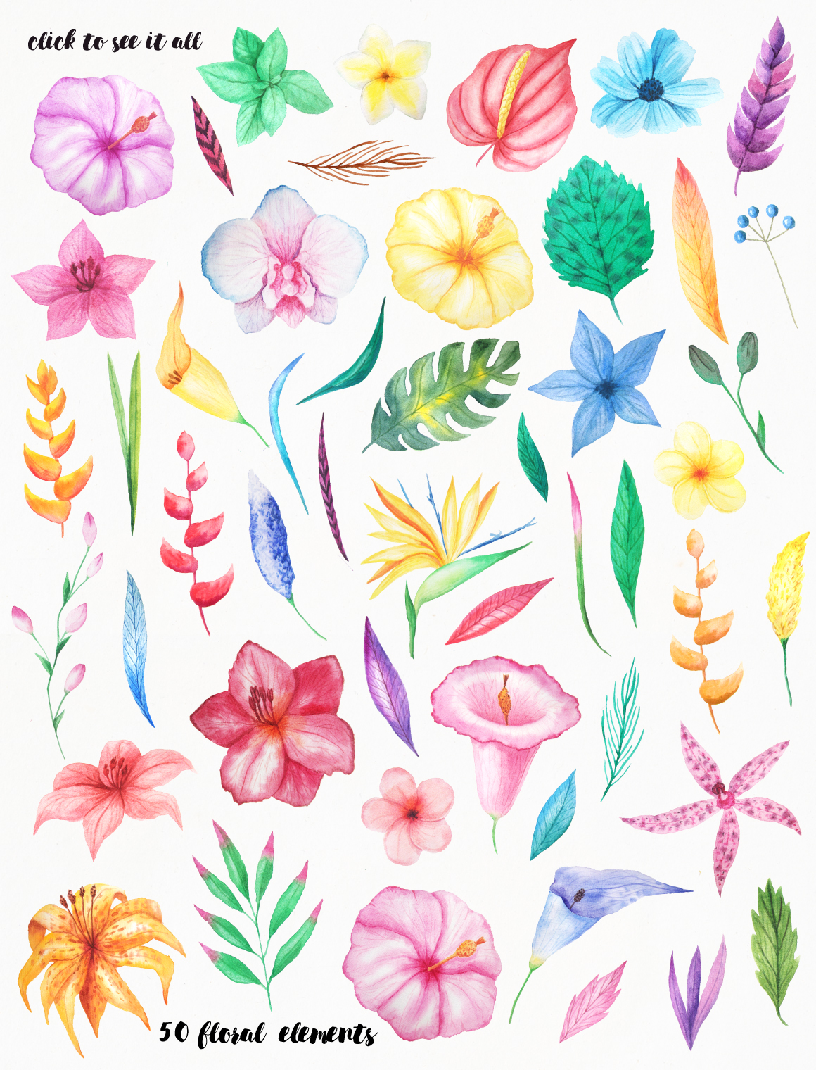 Summer Watercolor Floral BUNDLE example image 26