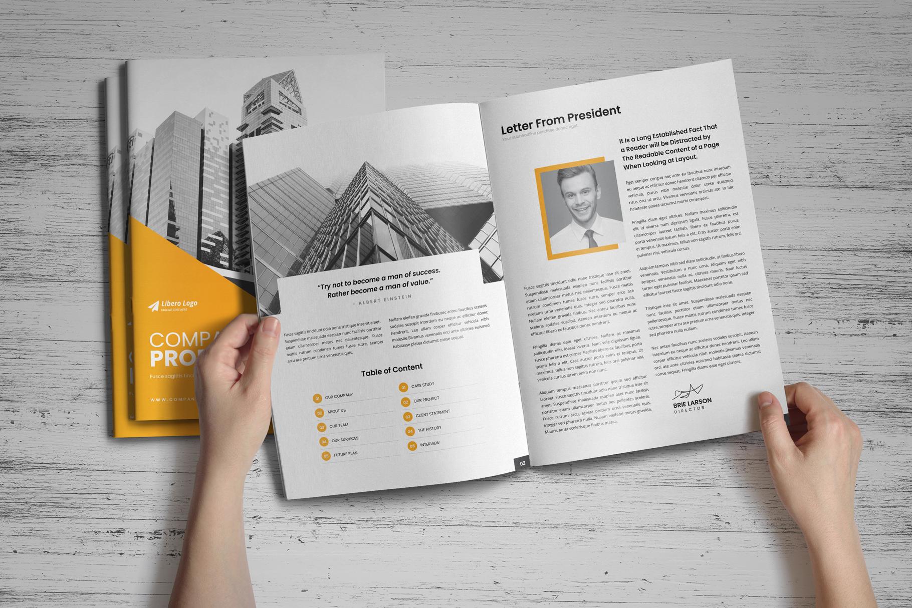 Company Profile Brochure v10 example image 2