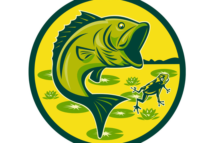 largemouth bass jumping with frog example image 1