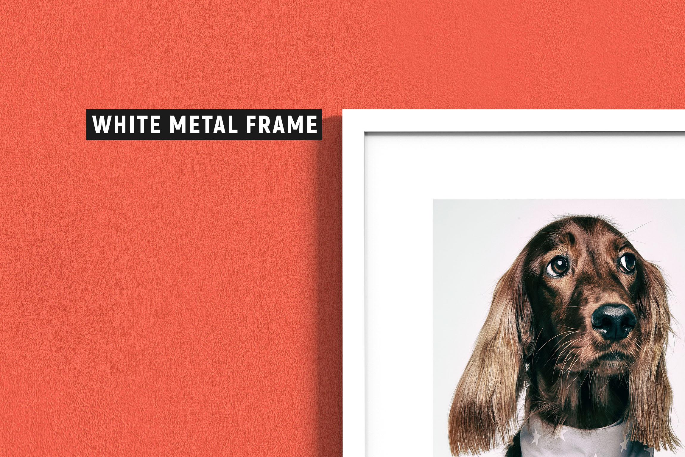 10 Frames & 7 Walls Mockups example image 12