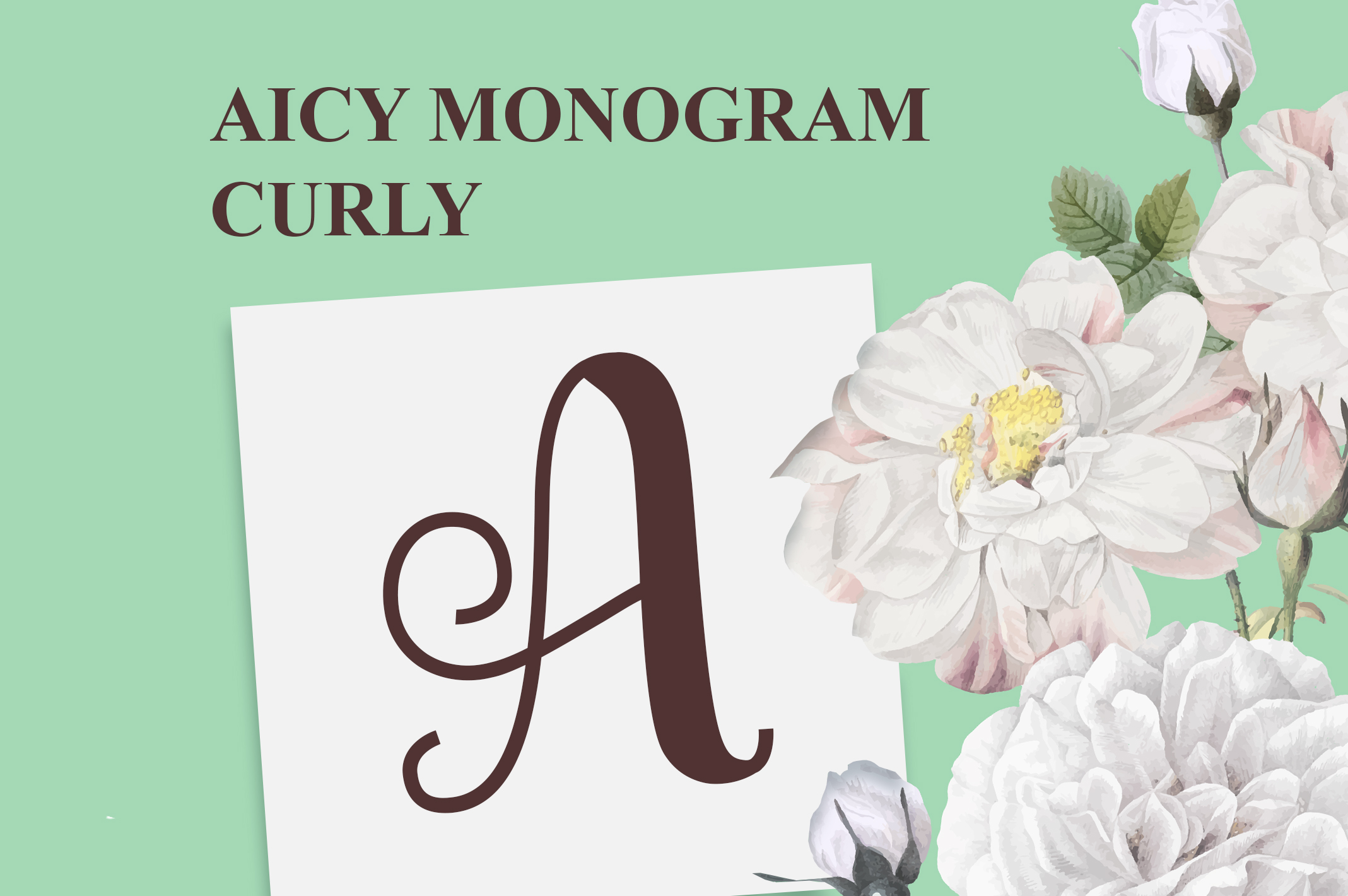 AICY Monogram Curly example image 2