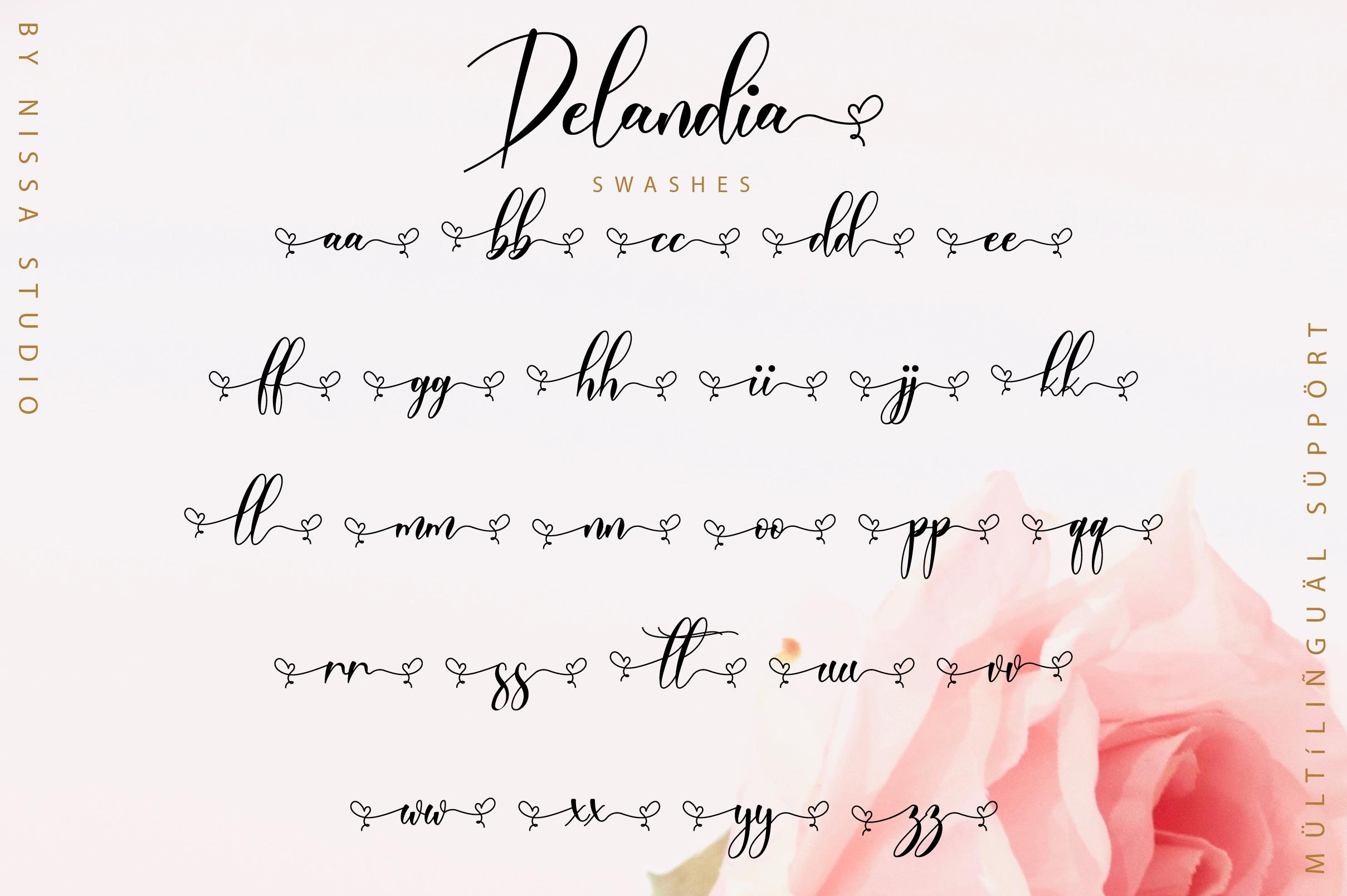 Delandia Script example image 12