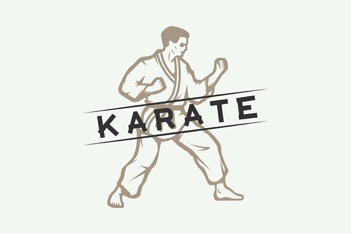 Vintage Karate Emblems Bundle example image 6