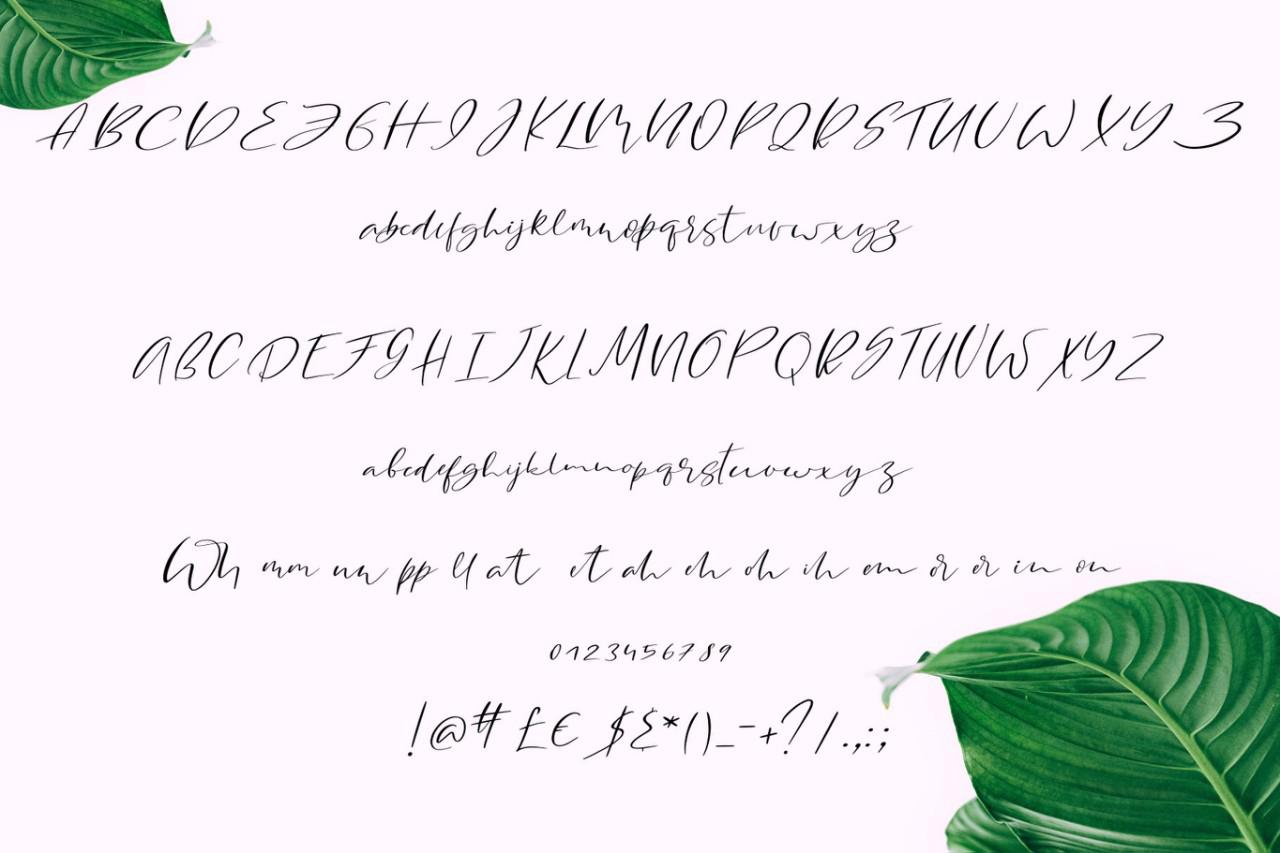 Monsteria Script example image 7