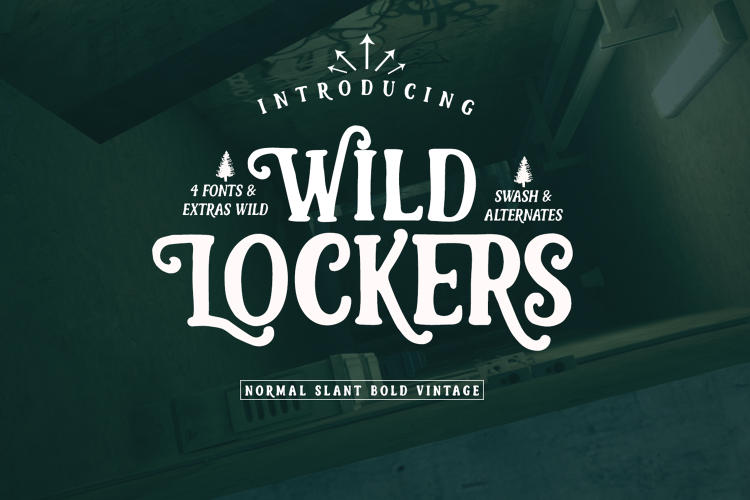 Lockers Font example image 1