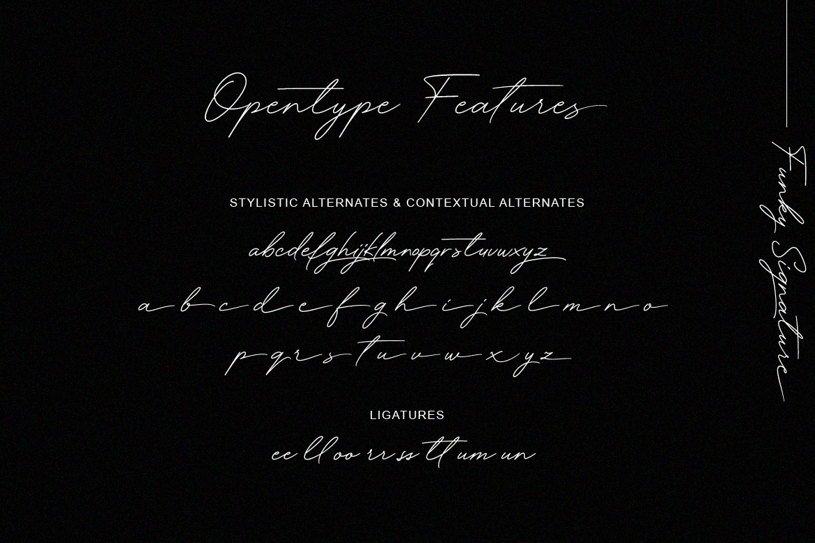 Funky Signature - Funky Fonts example image 8