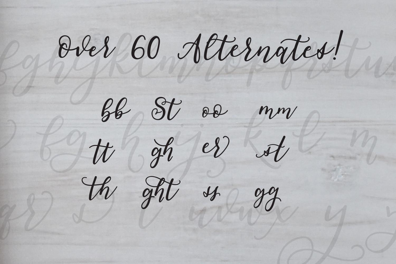 Smudge Script Font example image 3