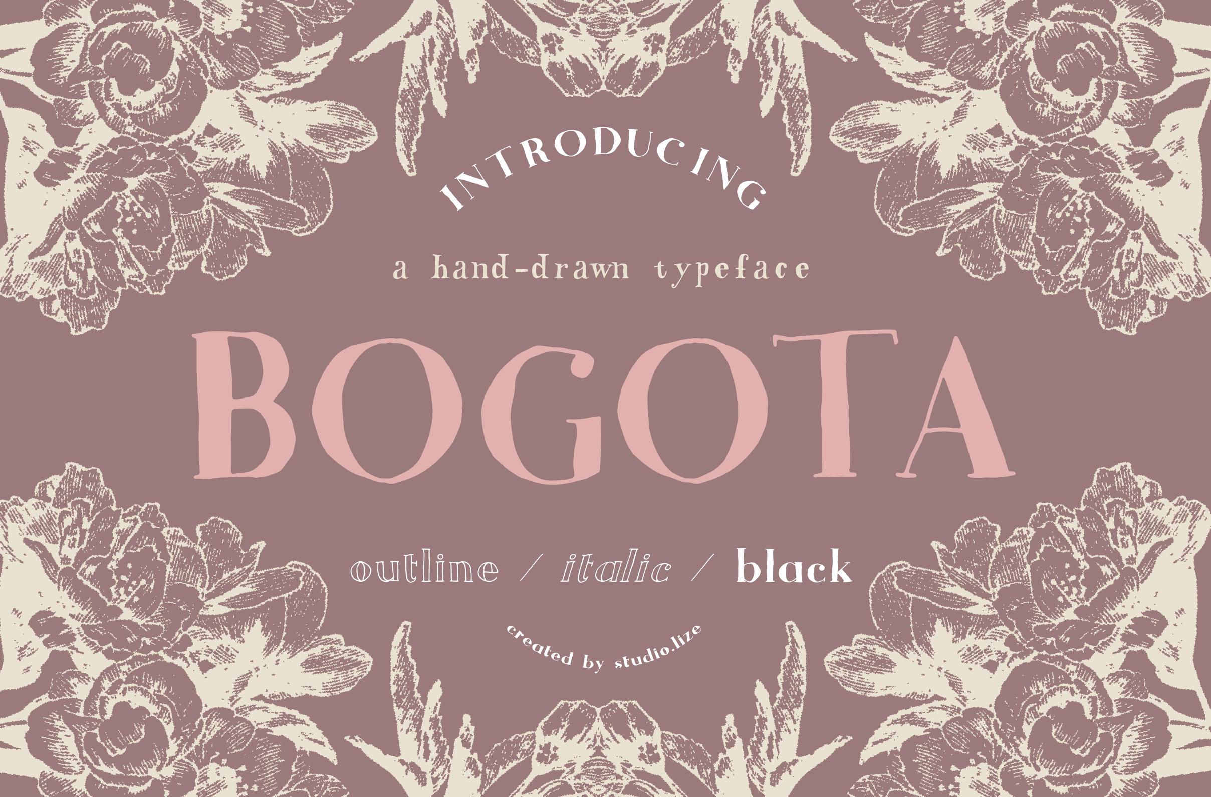 Bogota Handwritten Font example image 1