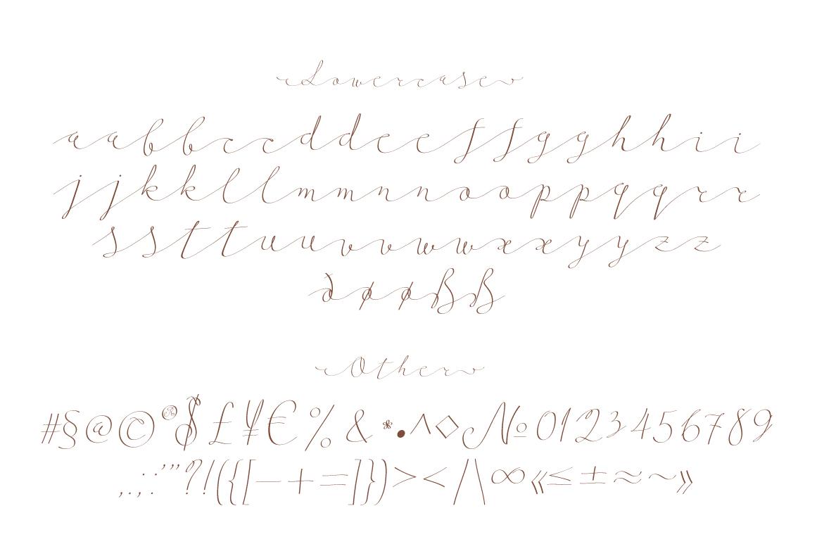 Follow script font example image 11