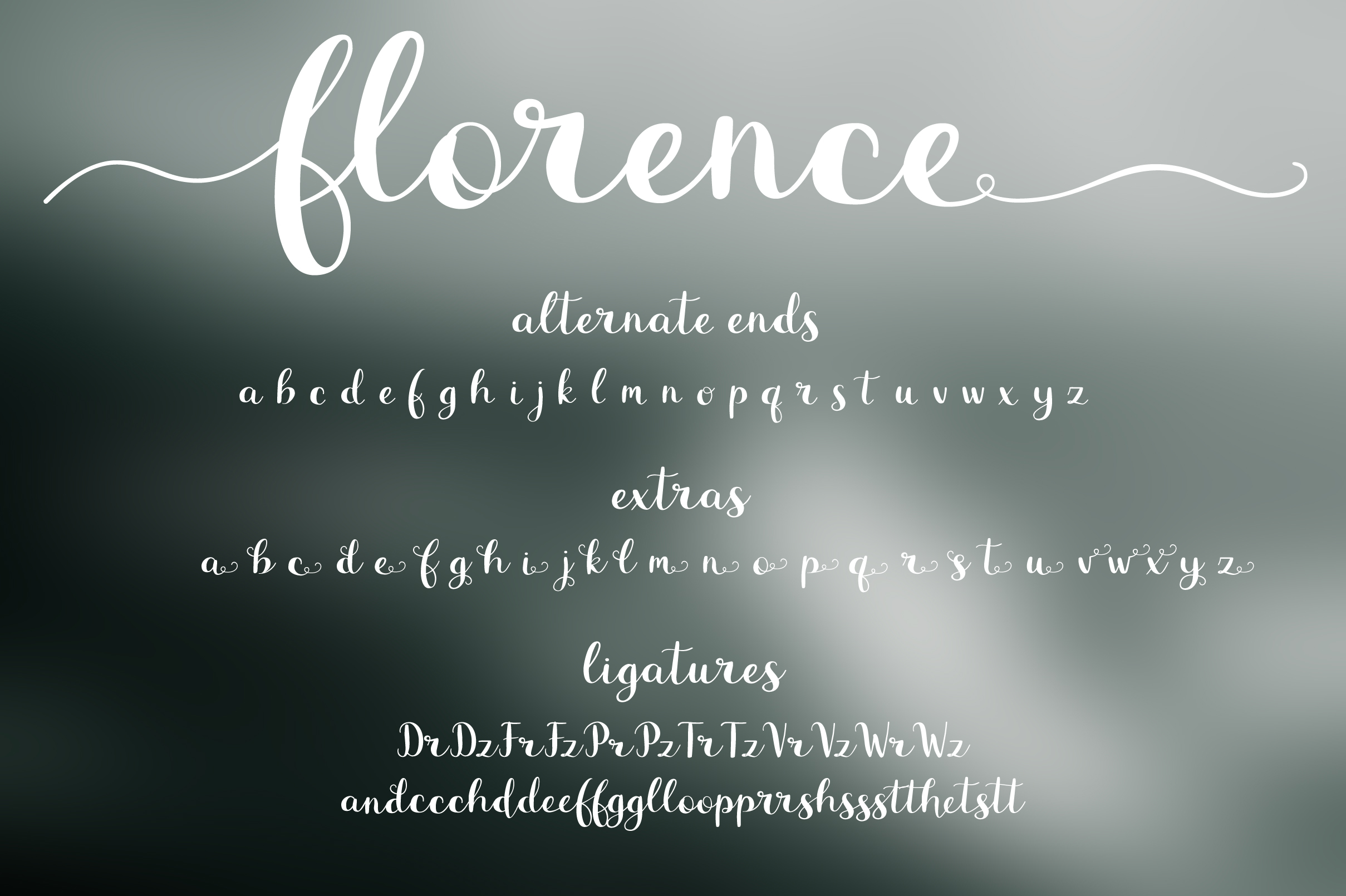 Florence Font Duo example image 8